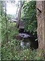 SJ8802 : River  Penk at Barnhurst Lane by John M