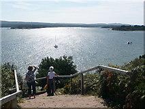 SZ0287 : Brownsea Island: view from top of Terrier Steps by Chris Downer