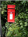 TM3968 : Bank Corner George VI Postbox by Geographer