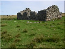 HU5489 : Ruin at Whitehill by Alan Bowring