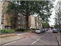 TQ2374 : Tildesley Road by Derek Harper