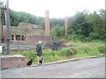 SJ6903 : Dogs at Blists Hill Open Air Museum (1) by Basher Eyre
