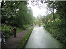 SJ6902 : Path from Coalport car park to the Tar Tunnel by Basher Eyre