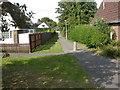 SZ0596 : Bearwood, footpath by Mike Faherty
