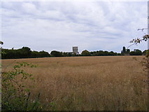 TM3763 : Saxmundham Water Tower & Saxmundham Middle School by Adrian Cable