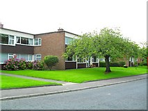 J3271 : The Flats, Marlborough Park South, Belfast by Dean Molyneaux