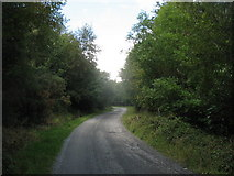 J3630 : Forest road in Drinnahilly Woods by Eric Jones