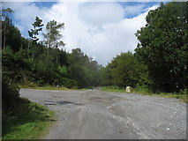 J3630 : Major track junction in Drinnahilly Woods by Eric Jones