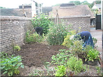 SJ6903 : Garden at the Artisan's House within Blists Hill Open Air Museum by Basher Eyre