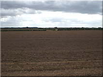 TA1345 : Farmland near Catwick by JThomas