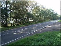 SE2853 : Crag Lane by Paul Gillett