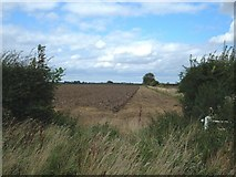 TA1343 : Field Entrance off Whins Lane by JThomas