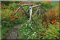 NG4120 : Rustic bridge leaving Glen Brittle beach by Fractal Angel
