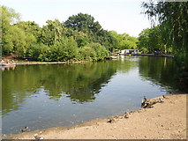 TQ3187 : Boating lake in Finsbury Park by Peter S