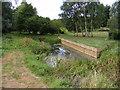 TM3674 : River Blyth at Walpole Bridge by Adrian Cable