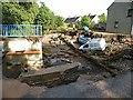 NJ3458 : Fochabers Floods 2009 (15) by Anne Burgess