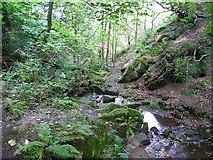 SE0722 : Footpath across the stream, Maple Dean Clough by Humphrey Bolton