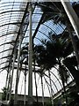 NT2475 : Tropical Palm House, Royal Botanic Garden, Edinburgh by Gerald Massey