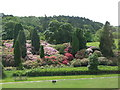 NZ0878 : Belsay Hall - part of the estate by Mike Quinn