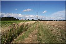 TL9159 : Footpath to Bradfield St George by Bob Jones