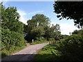 SX7488 : Lane near Cranbrook by Derek Harper