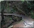 "NZ4138 : Footbridge on ""Red Squirrel Walk"" by Roger Smith"