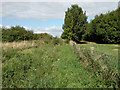 TL5869 : Public Footpath to New River by Keith Edkins