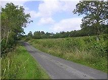G8742 : Road at Lisnabrack by Kenneth  Allen