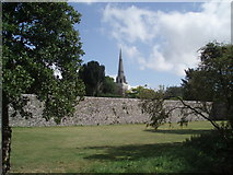 SU8504 : Chichester Cathedral southern Wall by Paul Gillett