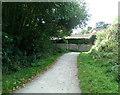 SZ0096 : Castleman Trail, Broadstone by Peter Kazmierczak