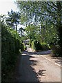 SO7966 : Lane from Shrawley Wood to the B4196 at Shrawley by P L Chadwick