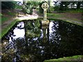 NT9502 : Lady's Well, Holystone by Andrew Curtis