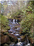NU0702 : Cragside waterfall by William Stafford