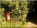 SY4797 : Oxbridge: postbox № DT6 117 by Chris Downer