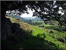 NZ0901 : Footpath passing below Orgate Farm by Roger Smith