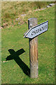 SK1695 : Cycle Route Sign by David Lally