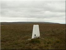 SE1303 : Snailsden Edge trig point by John Fielding