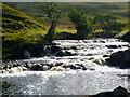 NC5430 : River Vagastie. by sylvia duckworth