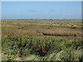 TG0044 : Morston Salt Marsh by Hugh Venables
