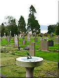 NY6920 : Appleby Cemetery by David Rogers