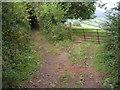 SO5407 : Field entrance off Coxbury Lane by James Ayres
