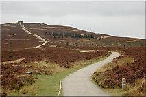 SJ1662 : Path to Moel Famau by Jim Barton