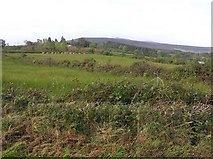 H0135 : Monesk Townland by Kenneth  Allen
