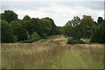 TQ1350 : Ranmore Common Road: towards Rose Cottage by Hugh Craddock