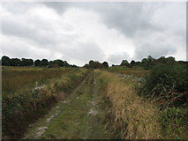 C2324 : Country lane at Carn High by Willie Duffin