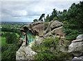SJ5729 : Grotto Hill, Hawkstone Park by Chris Gunns