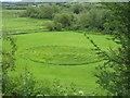 SE0841 : Grass Maze below Riddlesden Hall by David M Jones