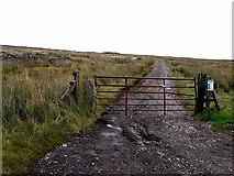 NY8135 : The road to Grasshill Farm by Oliver Dixon