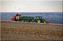 TA0114 : Potato Lifting near Worlaby by David Wright