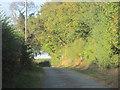 SJ3818 : Up the road from Wilcott marsh by John Firth